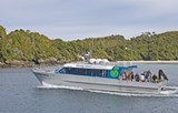 Our modern catamaran, ideal for cruising in Stewart Island's coastal waters