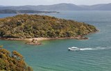 Cruises the inlets and bays of Stewart Island