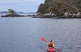 Explore the shoreline by kayak