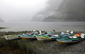 Doubtful Sound 5-day Expedition