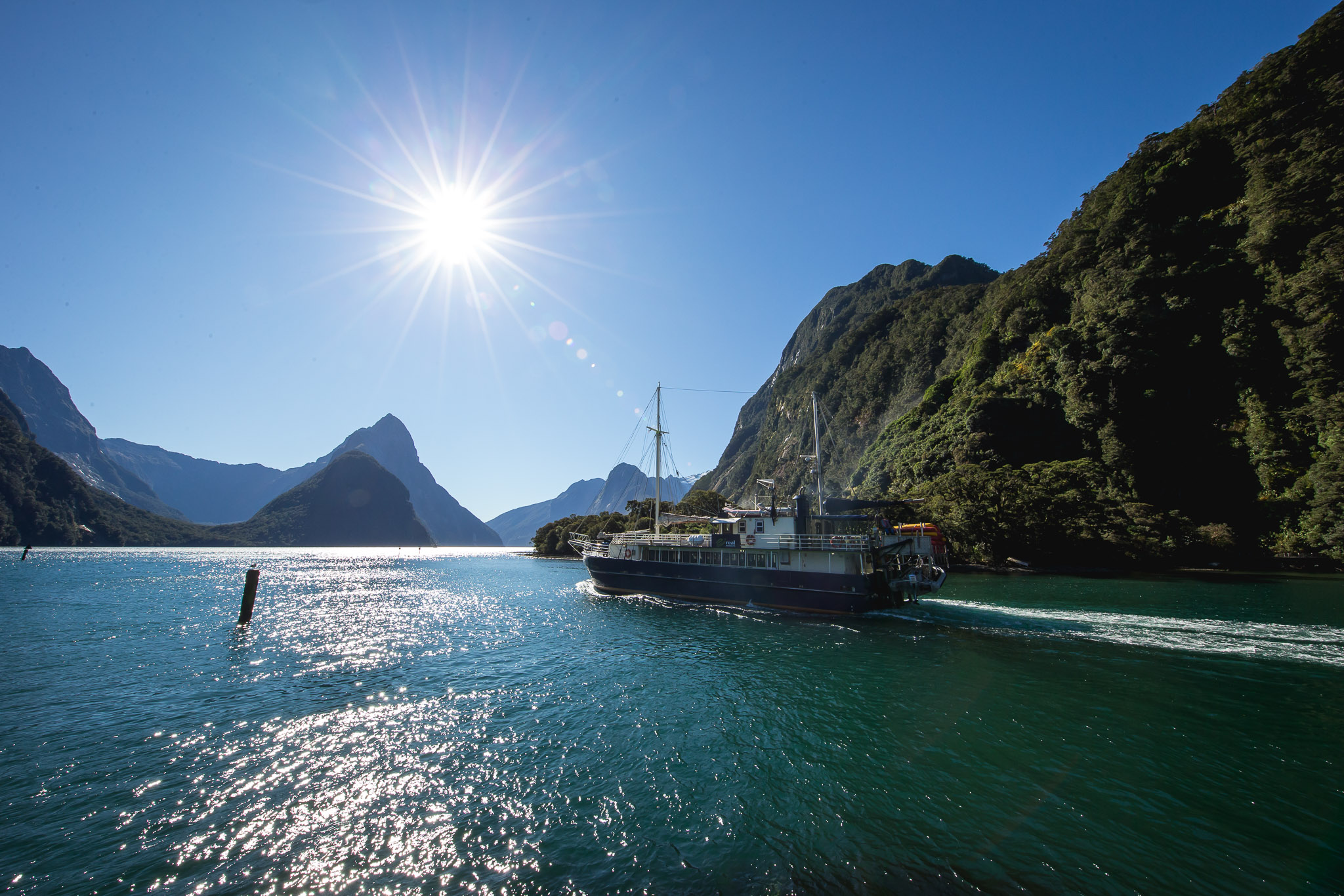 milford sound cruises tours real journeys