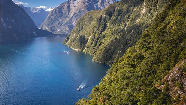 Milford Wanderer - cruising the fiord